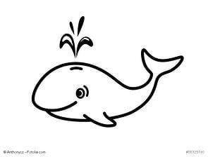 Unser Wal: Ein Neukunde