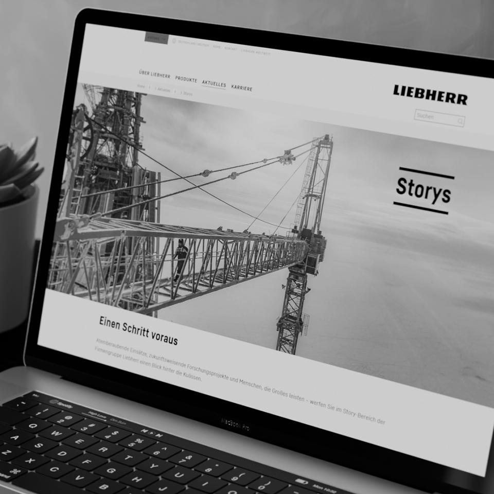 Kammann Rossi – Projekt – Liebherr – Beratung (Strategie & Inhalt)