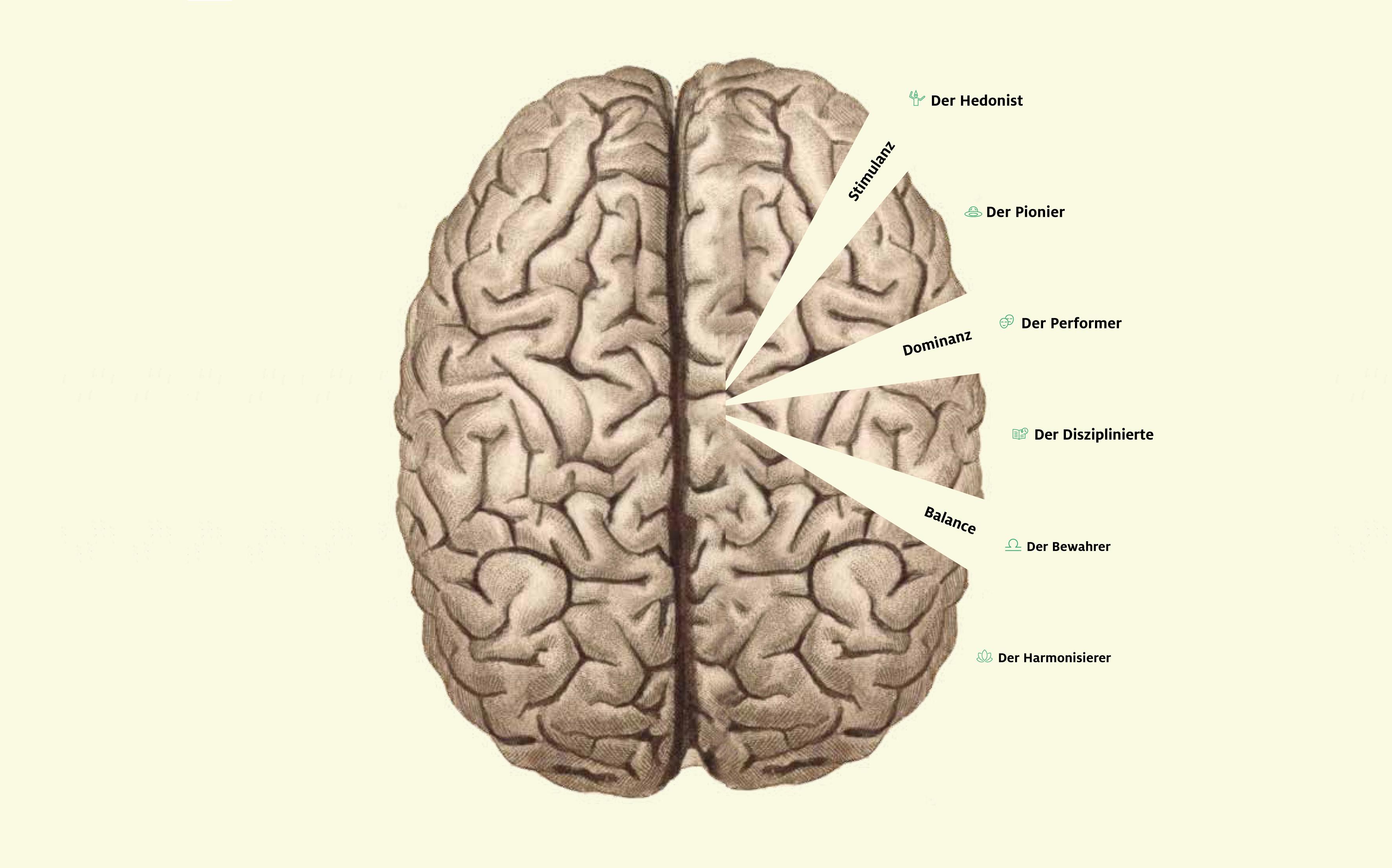 Braucht man für Content Marketing ein Gehirn?